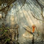 mangrove fisherman myanmar